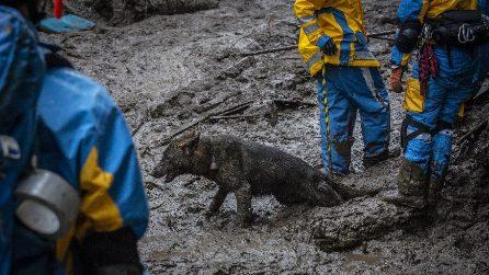 Giappone, soccorritori cercano ancora i dispersi dopo la frana di fango