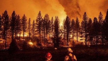 Vasti incendi nel nord della California: immagini devastanti
