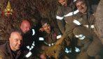 Un gruppo di eroici vigili del fuoco salva un cane rimasto incastrato sotto dei macigni