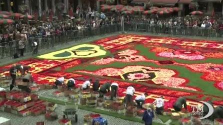 Bruxelles, un tappeto di quasi un milione di fiori al Grand-Place