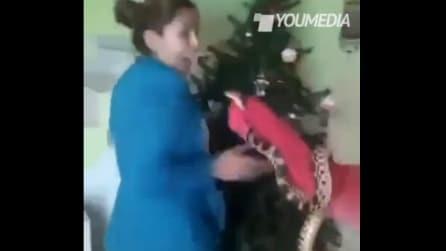 """""""Posso avere un serpente?"""", ecco la reazione della madre"""