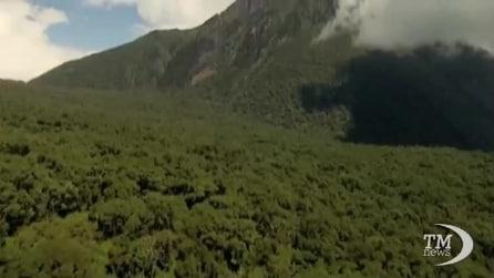 Il Virunga National Park minacciato dalle trivellazioni