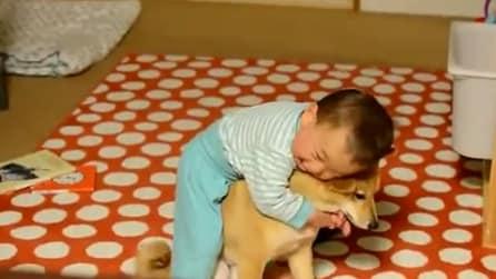 Amore incondizionato tra un bimbo e un cagnolino