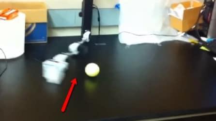 Ecco un robot che impara a giocare a baseball