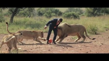 La partita di calcio con i leoni nella savana