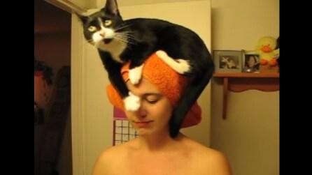 Ogni sera dopo la doccia, scambia la testa della sua padrona per un cuscino