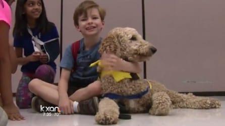 Cani e autismo, come è cambiata la vita di Conor grazie al suo amico a quattro zampe