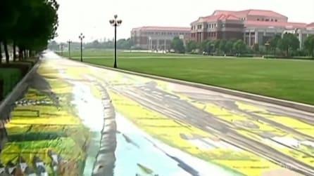 Cina, a Nanchino il più grande e lungo dipinto da strada 3D