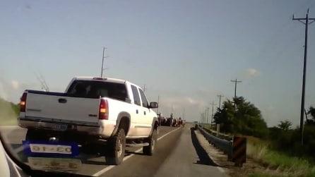 Ecco quello che può capitare ad automobilista in Texas