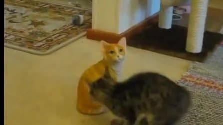 Scambia un gatto di ceramica in un suo simile e rivale