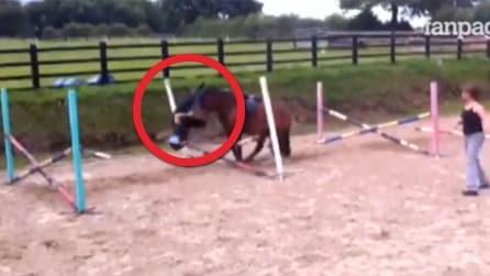 Cavallo si ferma bruscamente, ecco cosa succede ad una fantina