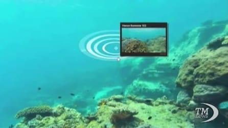 Google inizia l'esplorazione virtuale della grande barriera