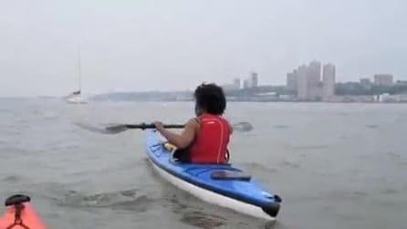 Kayak nello Hudson River