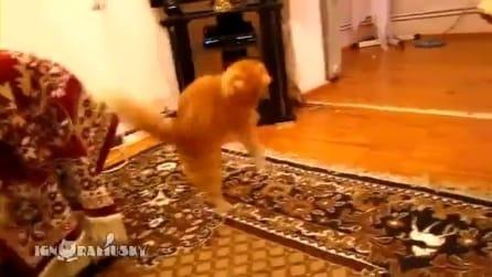 Il gatto che si spaventa con la musica di Mario Bros