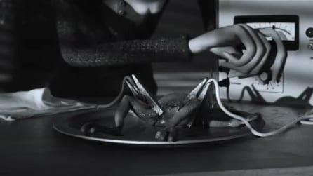 Frankenweenie - il nuovo trailer