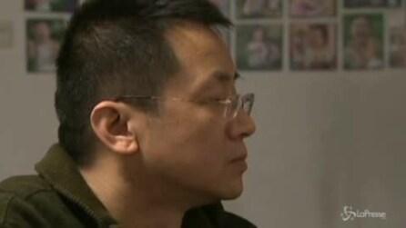 L'accoppiamento tra le antilopi tibetane