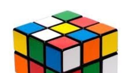Il crostaceo intelligente che risolve il cubo di Rubik