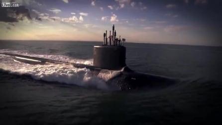 "I delfini nuotano insieme al sottomarino d'attacco ""USS Minnesota"""