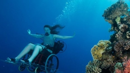 Nuotate ed immersioni subacquee sulla sedia a rotelle: si può!