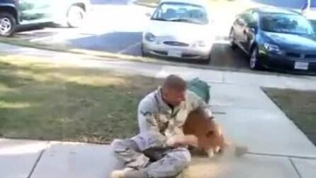 Un cane finalmente vede il suo padrone dopo 2 anni, ecco la sua reazione