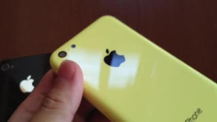 iPhone 5C back cover