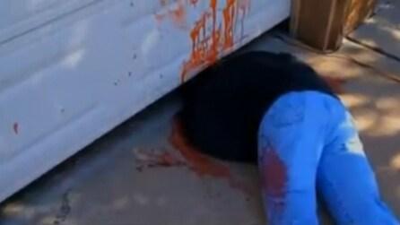 Usa, una famiglia terrorizza i vicini con addobbi per Halloween troppo realistici