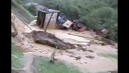 Cane fortunato, travolto dalla frana, riesce a salvarsi