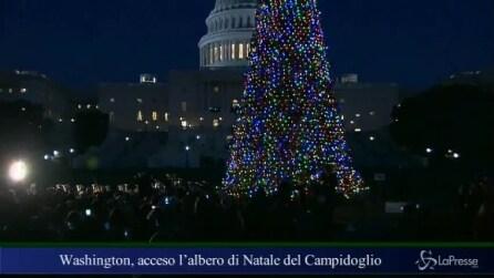Washington, acceso l'albero di Natale del Campidoglio