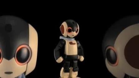 Robi, il robot che parla e si emoziona da costruire a casa