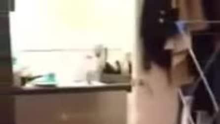 Il gatto che cammina e saltella su due zampe