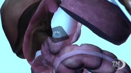 Il viaggio virtuale nel corpo umano, come nei film ma con l'iPad