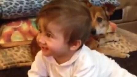 Maria, figlia di Carmen Russo ed Enzo Paolo Turchi gioca con i cagnolini