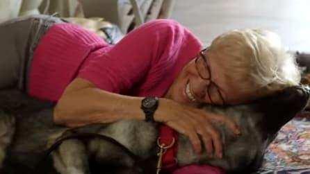 Regala un cane alla moglie malata di Alzheimer: ciò che accade al primo incontro vi commuoverà