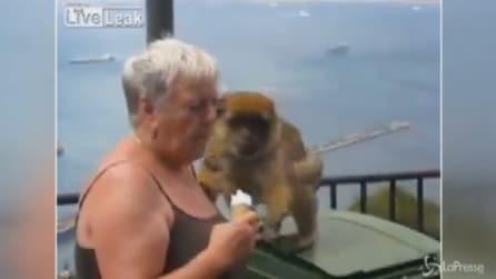 Attenzione alla scimmia: la turista si distrae e le conseguenze sono esilaranti