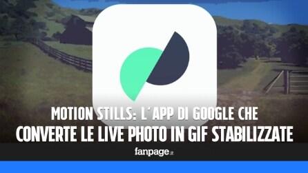 Motion Stills, l'app di Google che trasforma le Live Photo in GIF stabilizzate