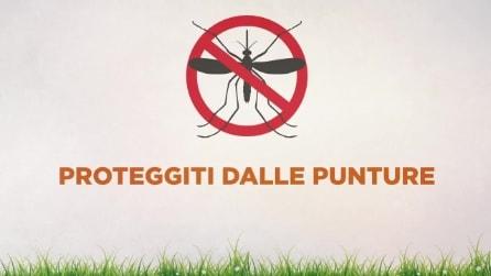Come proteggersi dalle zanzare, il video che ti spiega come evitare le punture