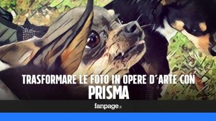 Prisma: come trasformare le foto in opere d'arte