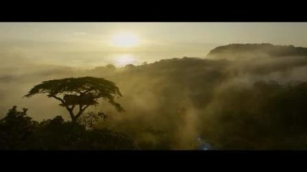 The Legend of Tarzan: il trailer italiano