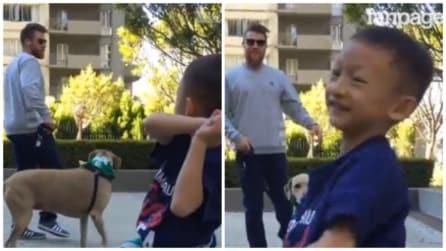 Il bambino incontra il suo campione preferito al parco: il gesto del giocatore vi colpirà
