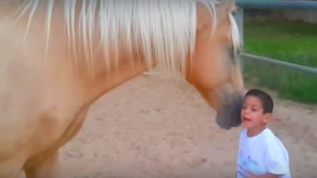 Il piccolo ha una rara malattia genetica, ma ciò che accade quando incontra questo cavallo è meraviglioso
