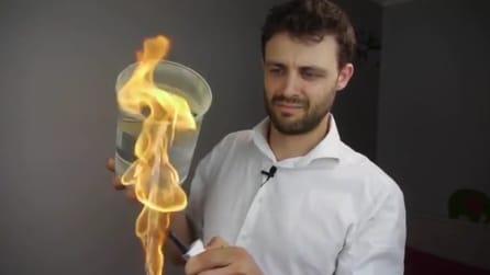 """Gli effetti """"magici"""" della polvere di Licopodio"""