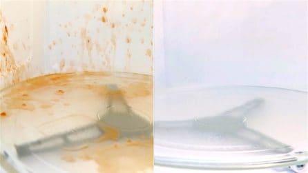 Ecco come pulire il forno a microonde in pochi minuti