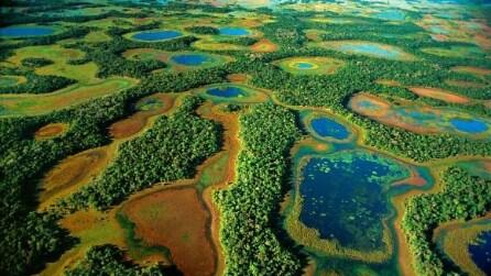 """Ecco il Pantanal, l'ultimo """"paradiso naturale"""" in Brasile"""