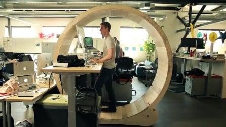 I benefici della ruota del criceto per chi lavora alla scrivania tutto il giorno