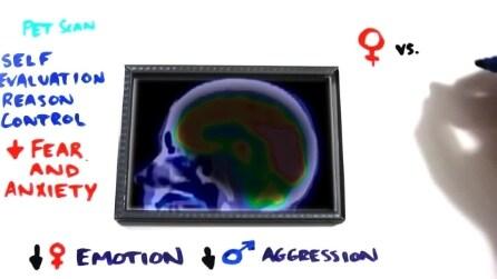 La scienza dell'orgasmo: ecco perché si prova piacere e benessere