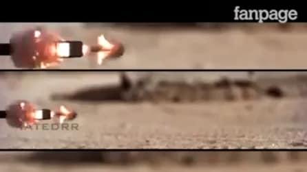 Il cecchino è infallibile: lo sparo in slow motion con iPhone 6