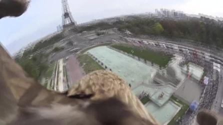 Il volo dell'aquila su Parigi, la città come non l'abbiamo mai vista