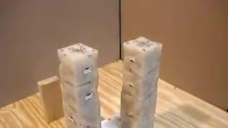 Il robot del futuro