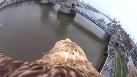 Londra, il volo dell'aquila: una fantastica soggettiva sul Tower Bridge