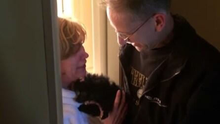 Sorprende la moglie regalandole un dolcissimo cucciolo